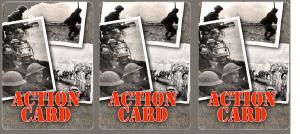 ASV Full Size cards Back