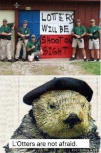 L'Otters Are Not Afraid!