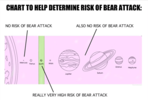 Books, Levels and Bears?